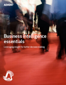 Whitepaper:&nbsp;Business Intelligence Essentials<br>